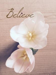 BelieveCardboard