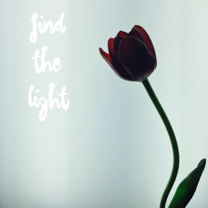 FindTheLight